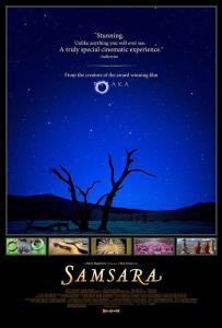 samsara-137238820-large