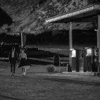 Twin Peaks 08